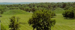 Fox Mound