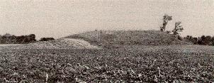 Mound 5