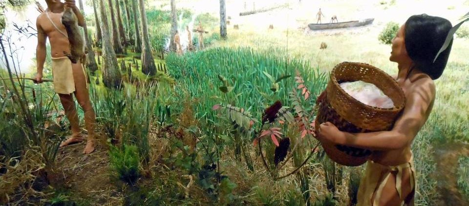 New Cahokia Mounds Exhibit Features 700-Year-Old Canoe