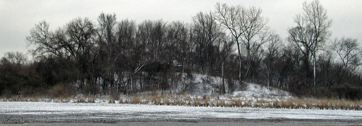 Mound 11 Kunnemann Mound