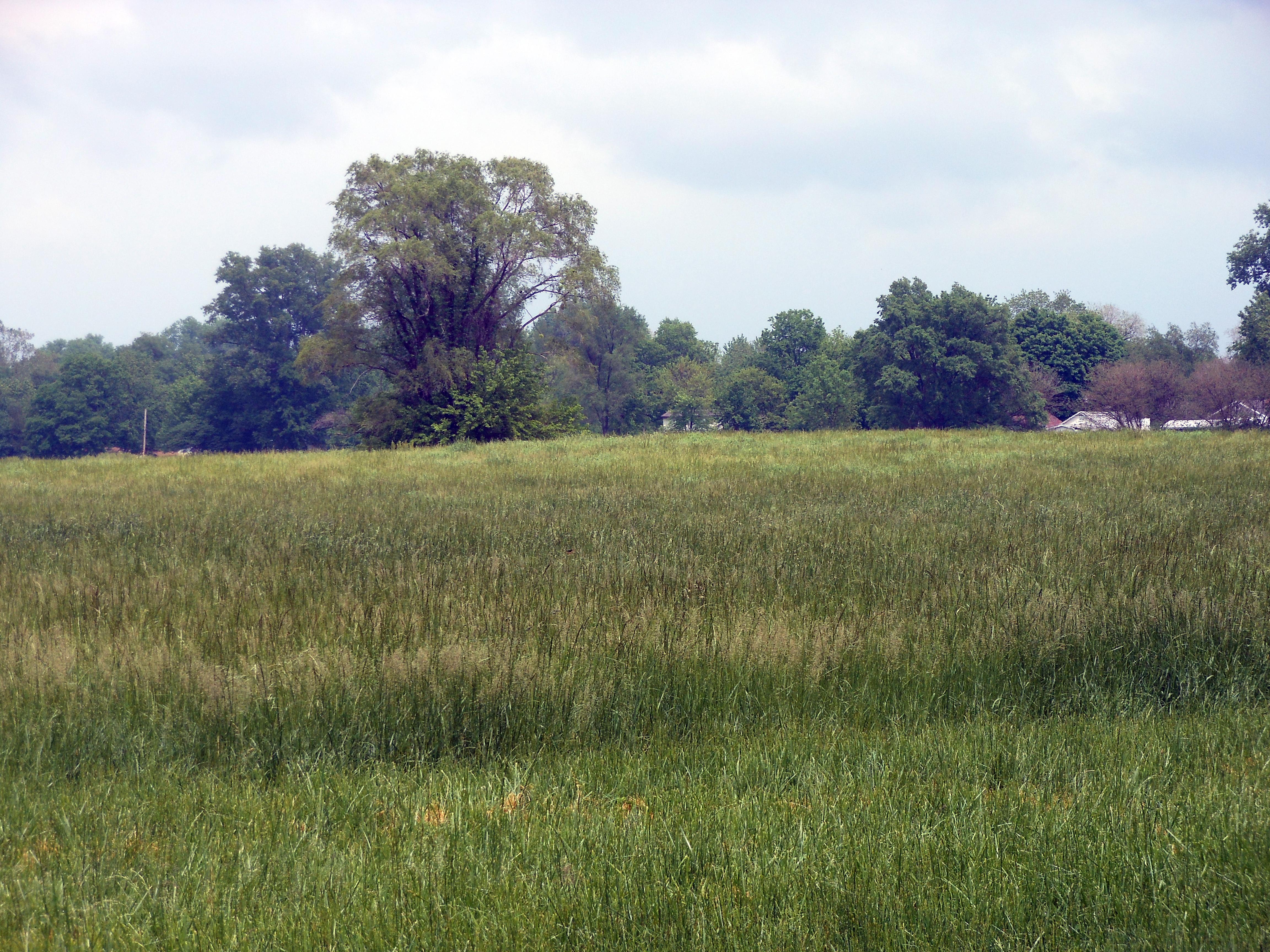 Cahokia Mounds | Cahokia Map